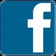 vincent body expert facebook