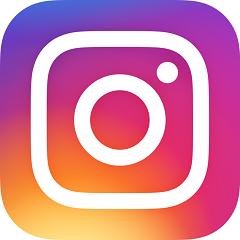 vincent body expert instagram